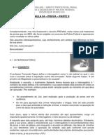 Aula 04 Processo Penal Pedro ivo.pdf