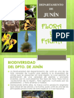 Biodiversidad Junin