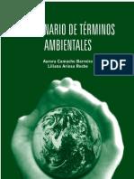 Diccionario Amb