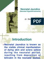 Neonatal Jaundice Dr.masliani
