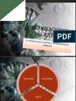 ORGANIZACIONES DELICTIVAS