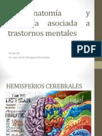 Neuroanatomia y Fisiologia de Los Tm