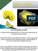 Atmosfera Modificada en Banano Diapositivas Inteligencia Artificial