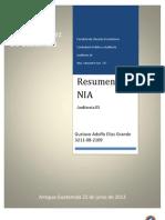 resumennia-130628135459-phpapp01