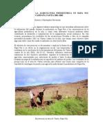 Agricultura Prehistórica. Rapa Nui