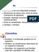 Intro5 mutacao GG2012.1