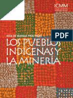 Comunidad y Pueblos Indigenas