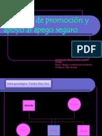 Proyecto de promoción y apoyo al apego seguro pwers