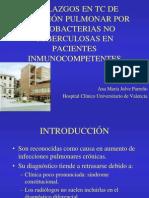 presentacin_micobacterias_copy2