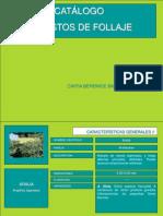Catalogo de Arbustos de Follaje