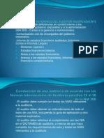 Informes Del Auditor Independiente