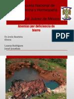 Anemias ferroprivas HJM 2013