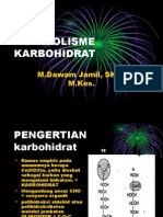 Metabolisme Karbohidrat1