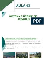 AULA 03 SISTEMA DE CRIAÇÃO PDF
