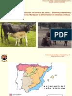 sistema de produccion en bovinos.pdf