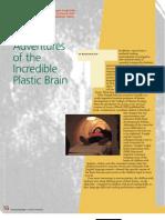 The Incredible Plastic Brain