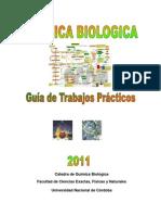 Guia Quimica Biologica-2011
