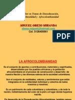 1catedra Afro Insumos Pedagogicos 2013 (Samudio2)