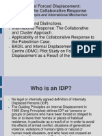 Collaborative Responses for IDPs