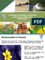 Comision Medio Ambiente 23agosto2013