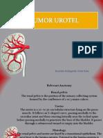 Tumor Urotel