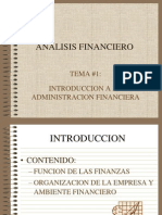 Analisis Financiero Tema 1 2013