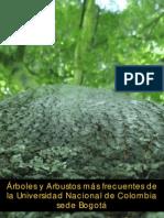 Arboles y Arbustos Universidad Nacional de Colombia