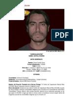CV Daniel Castillo Durán