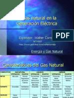 Generacion y Gas Natural