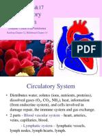16-17 - Circulatory System