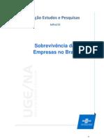Taxa de Sobrevivencia Das Empresas No Brasil Jul 2013