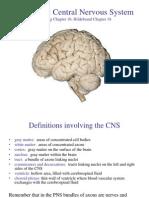 22 - Central Nervous System