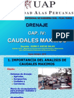 4. CAUDALES MAXIMOS