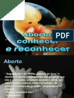 Slides Sobre Aborto (Palestra)