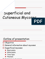 Superfical and Cutaneous