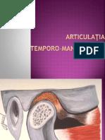 articulatia-temporo-mandibulara