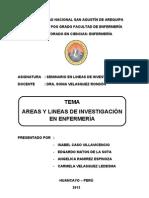 AREAS Y LINEAS DE INVESTIGACIÓN EN ENFERMERÍA