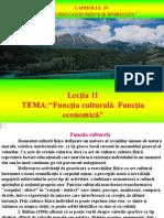TMCF Lectia 11