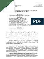 7 de Febrero de 2013 Acta Ordinaria