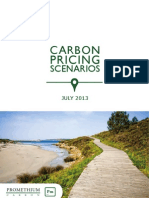 Carbon Pricing_july 2013
