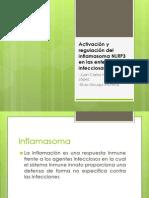 Activación y regulación del inflamasoma NLRP3