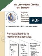 Presentacion Permeabilidad de La Celula Biologiatparalelo2grupo1