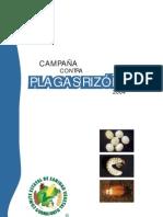 folletoplagasrizofagas2004