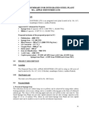 Executive Summary For Integrated Steel Plant M/S  Apple Industries Ltd