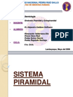 15091403 Sindrome Piramidal y Extrapiramidal Final