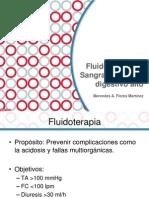 Fluidoterapia en Htda