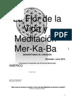 Flor de La Vida y Meditacion MerKaba