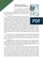 Pegada_ecologica