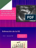 crecimientoydesarrollofetal-111003164110-phpapp01