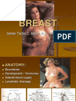 Breasts Terapi Phpapp01